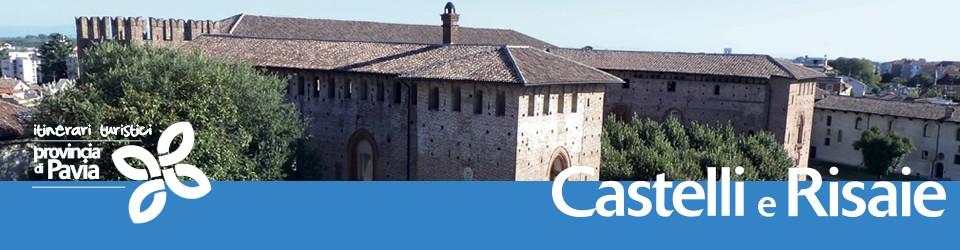 head-castelli-risaie